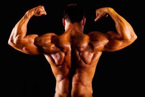 גוף מתאמן פיתוח גוף
